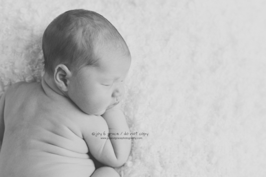 8 day old baby boy - becker newborn photographer