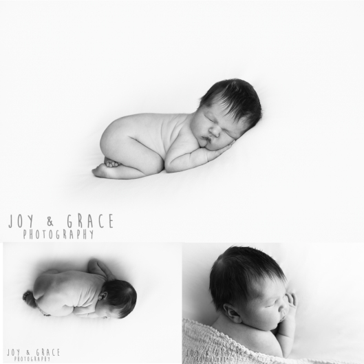 becker newborn photographer