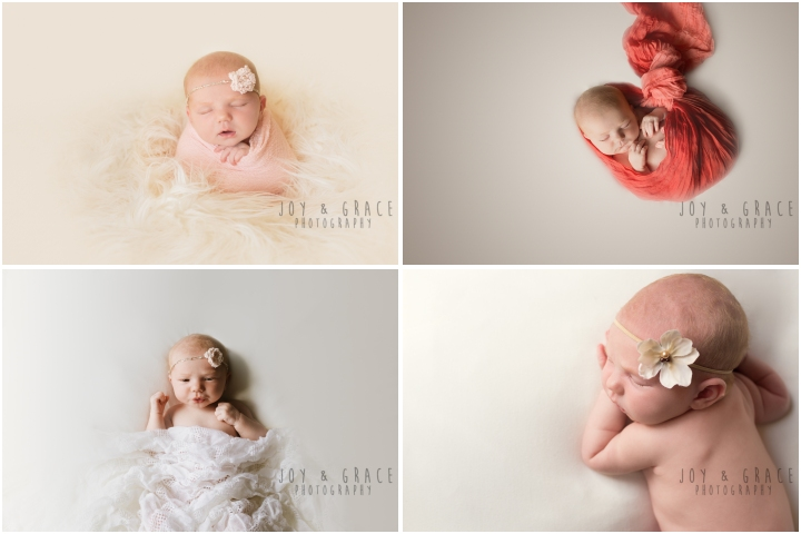 monticello newborn photographer