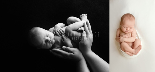 monticello newborn photography