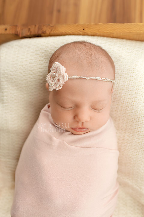becker newborn photographers