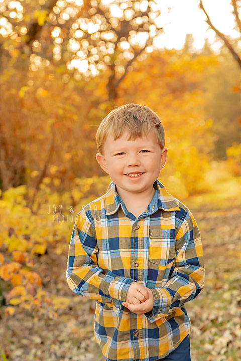 fall mini session family photographer becker mn